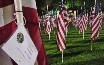 True Patriots Care Stages 400 U.S. Flags of Honor in Wilder Park